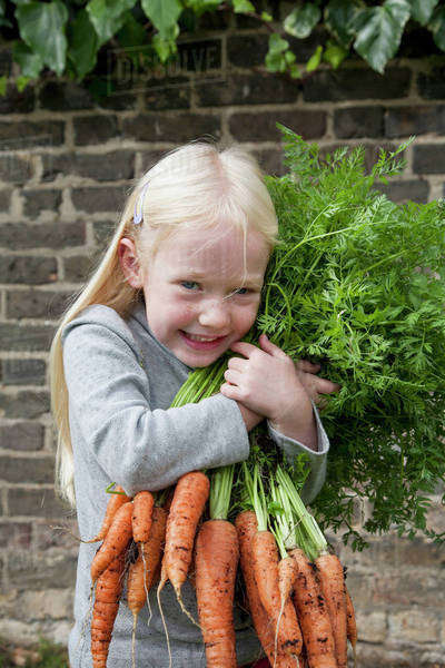A young girl holding a large bunch of carrots. Royalty-free stock photo