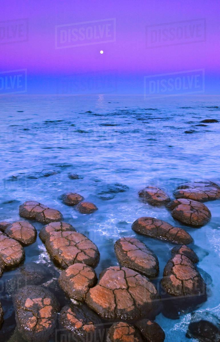 Stromatolites And Moon Shark Bay Western Australia Stock Photo