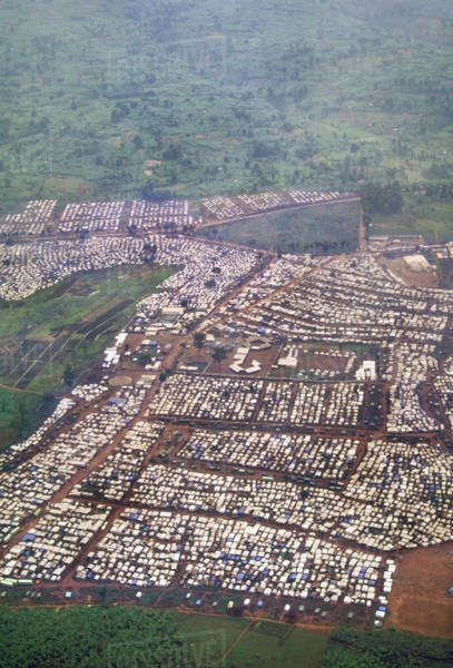 Refugee camp near Bukavu, Congo, DRC, Democratic Republic of the Congo Rights-managed stock photo