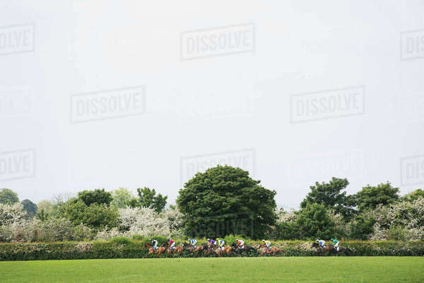 Group of riders on racehorses galloping during a steeplechase across the countryside in spring.  Royalty-free stock photo