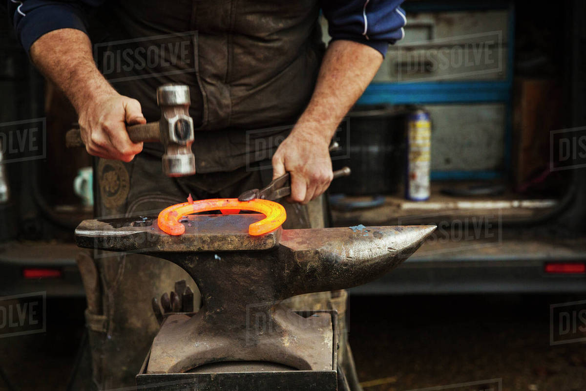 A farrier using tongs and hammer to hold and shape a red glowing heated  metal horseshoe to be fitted  stock photo