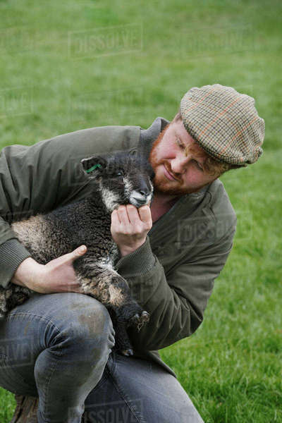 A farmer holding a young lamb in his arms checking on the animal. Royalty-free stock photo