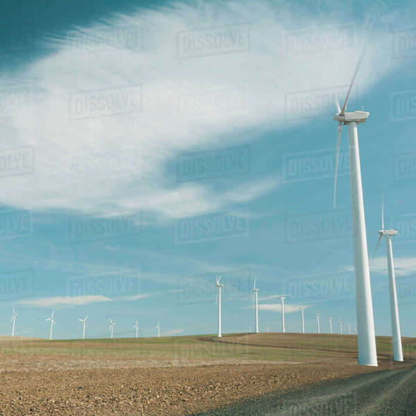 Wind turbines, tall white towers in the flat plains by a road near the Columbia River Gorge.  Royalty-free stock photo