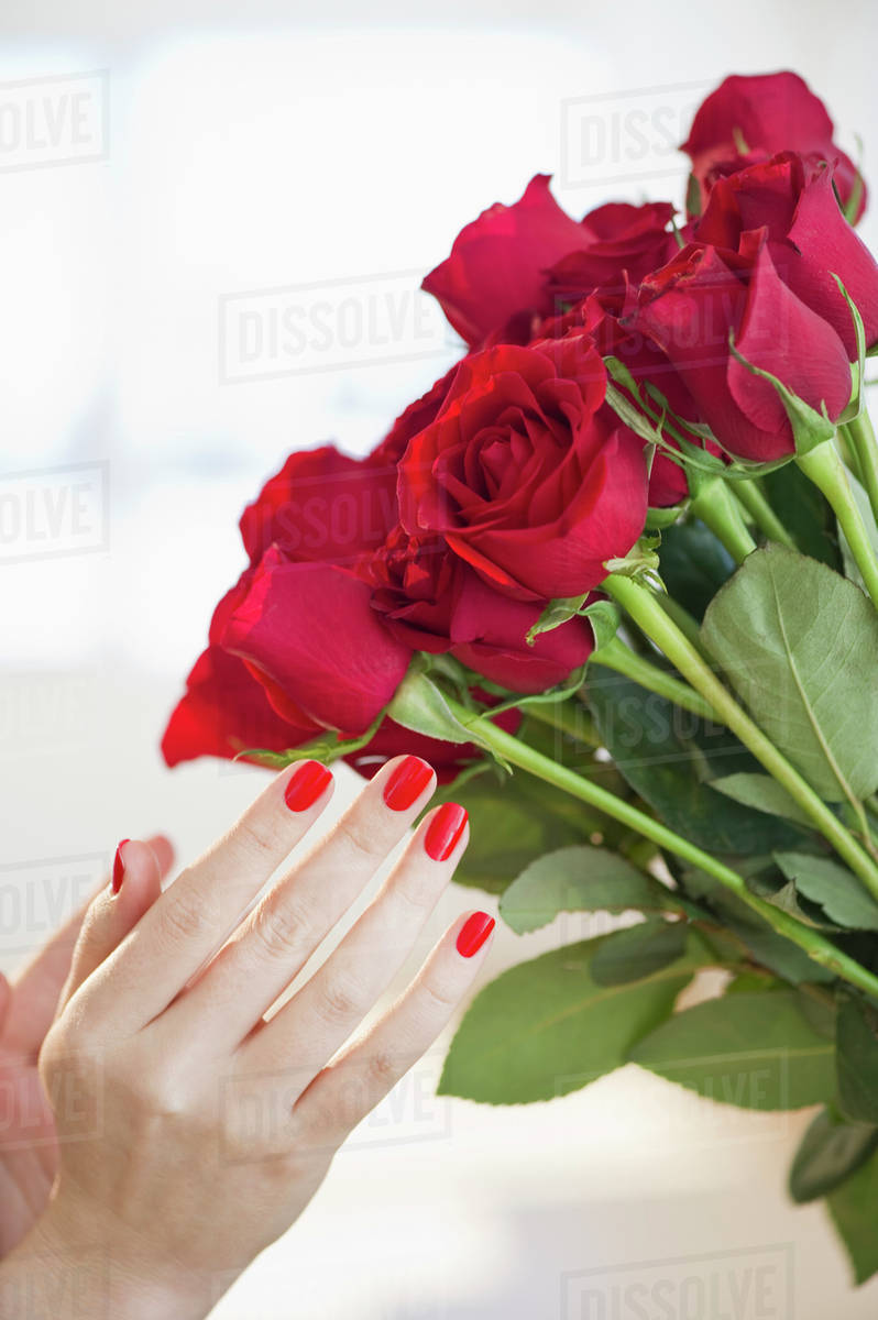 Red roses and hand with red nail polish stock photo dissolve red roses and hand with red nail polish izmirmasajfo