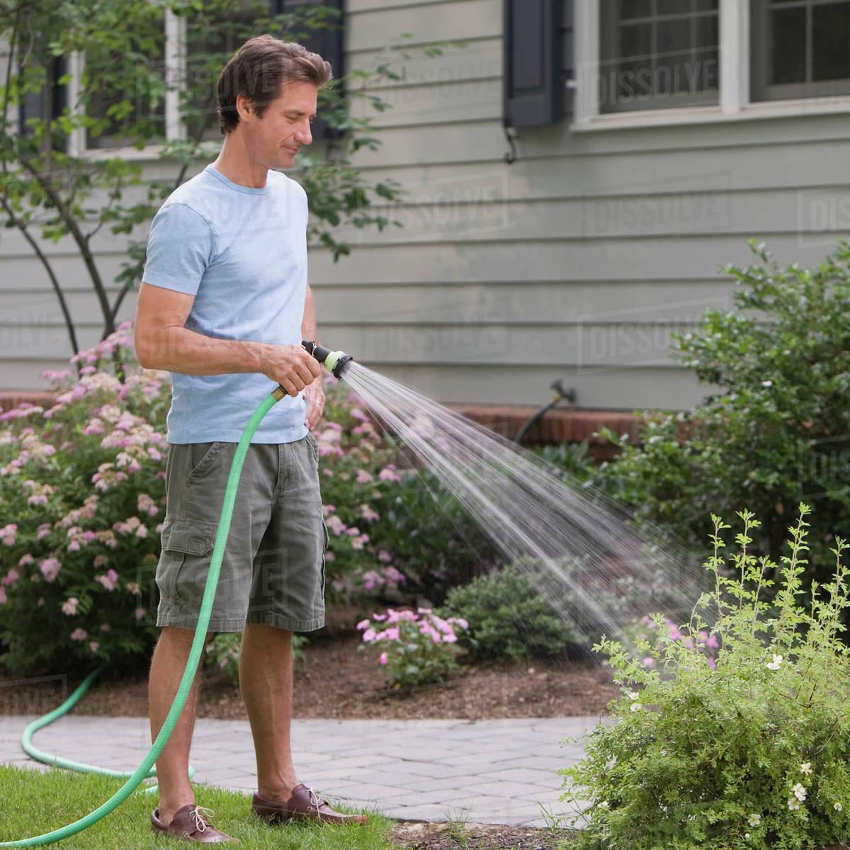 Man Watering Plants Stock Photo Dissolve