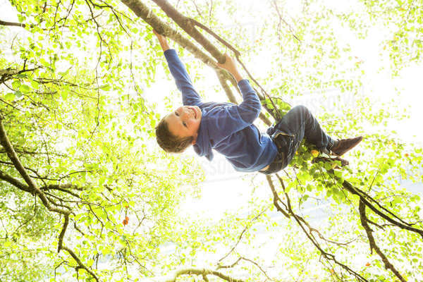 Smiling boy (6-7) hanging on branch Royalty-free stock photo