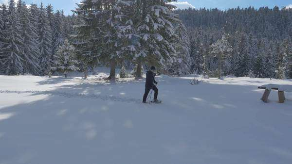 Aerial - Young man snowshoeing. Dog approaches at the end of a clip Royalty-free stock video