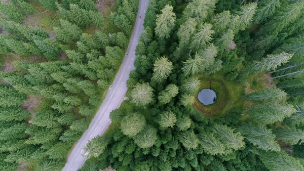 Aerial - Top down view of male running on the road through the forest, extreme long shot Royalty-free stock video