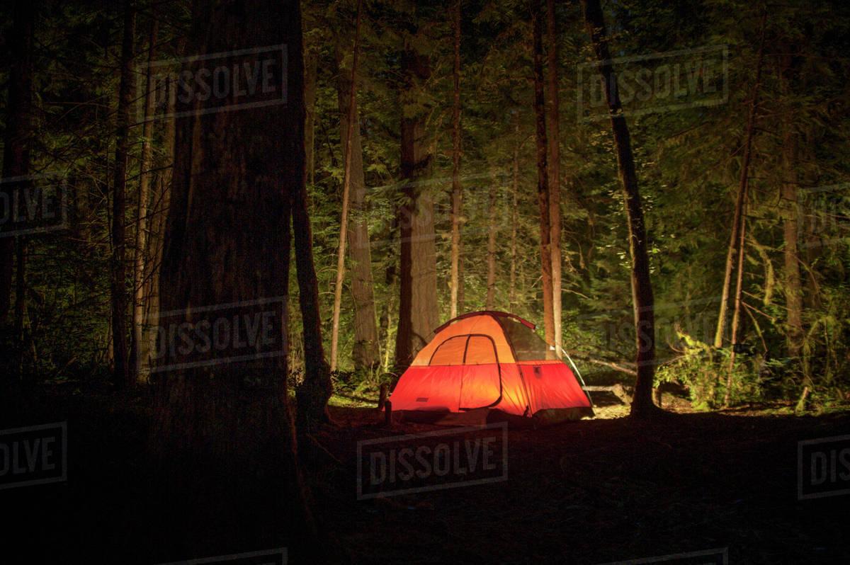 Lit up tent in dark woods & Lit up tent in dark woods - Stock Photo - Dissolve