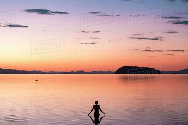 Rear view of woman standing in sea during sunset Royalty-free stock photo