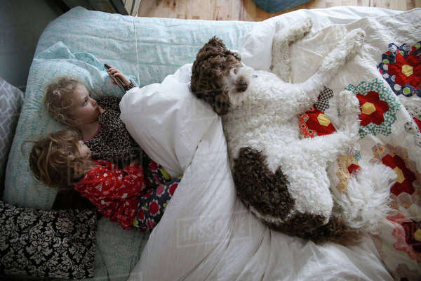 High angle view of sisters using mobile phone while lying with dog on bed Royalty-free stock photo