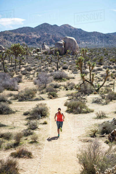 High angle view of female hiker running at Joshua Tree National Park during sunny day Royalty-free stock photo