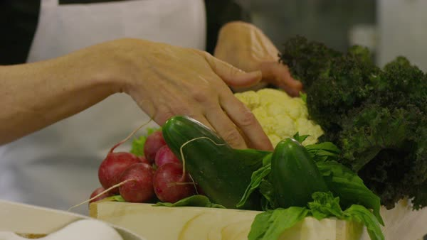 Handheld shot of female chef examining vegetables at kitchen counter in restaurant Royalty-free stock video