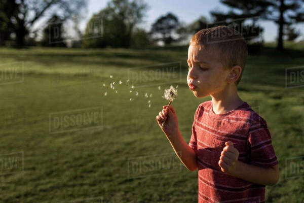 Boy blowing dandelion seeds at park Royalty-free stock photo