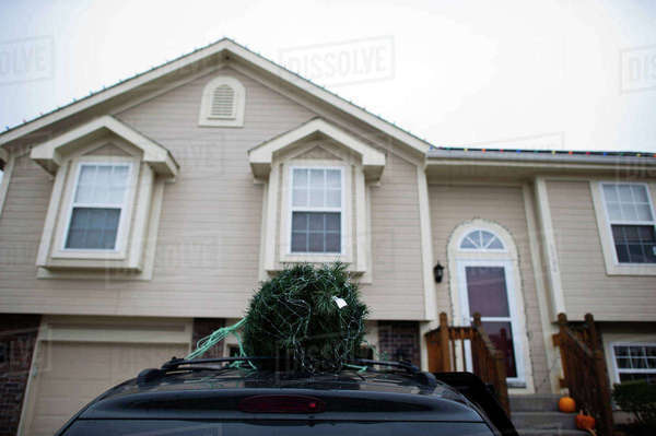 Low angle view of Christmas tree on car roof parked by house Royalty-free stock photo