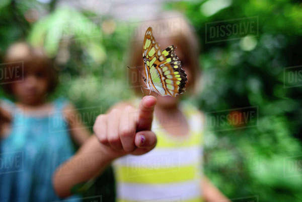 Butterfly on girl's finger at park Royalty-free stock photo