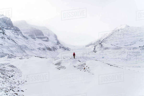 Mid distance view of hiker standing on snow covered landscape during foggy weather Royalty-free stock photo