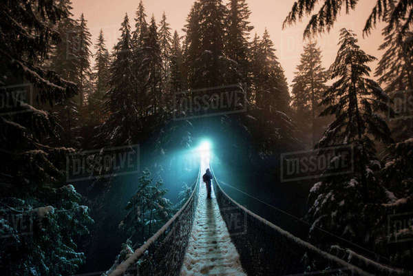 Hiker standing on footbridge amidst forest at Lynn Canyon Park Royalty-free stock photo