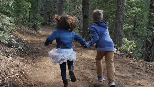 Slow motion handheld shot of siblings holding hands while running on footpath in forest Royalty-free stock video
