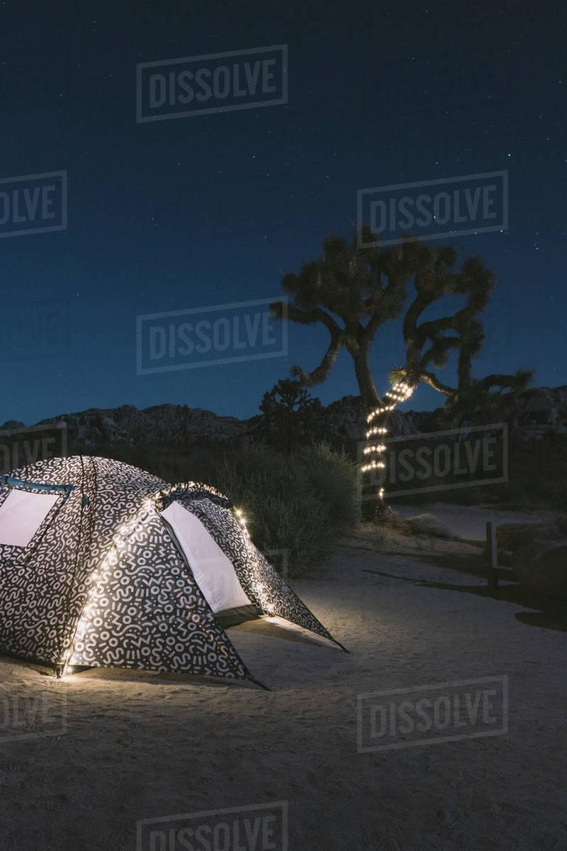 Illuminated Tent On Desert Against Sky At Joshua Tree National D1061 227 359
