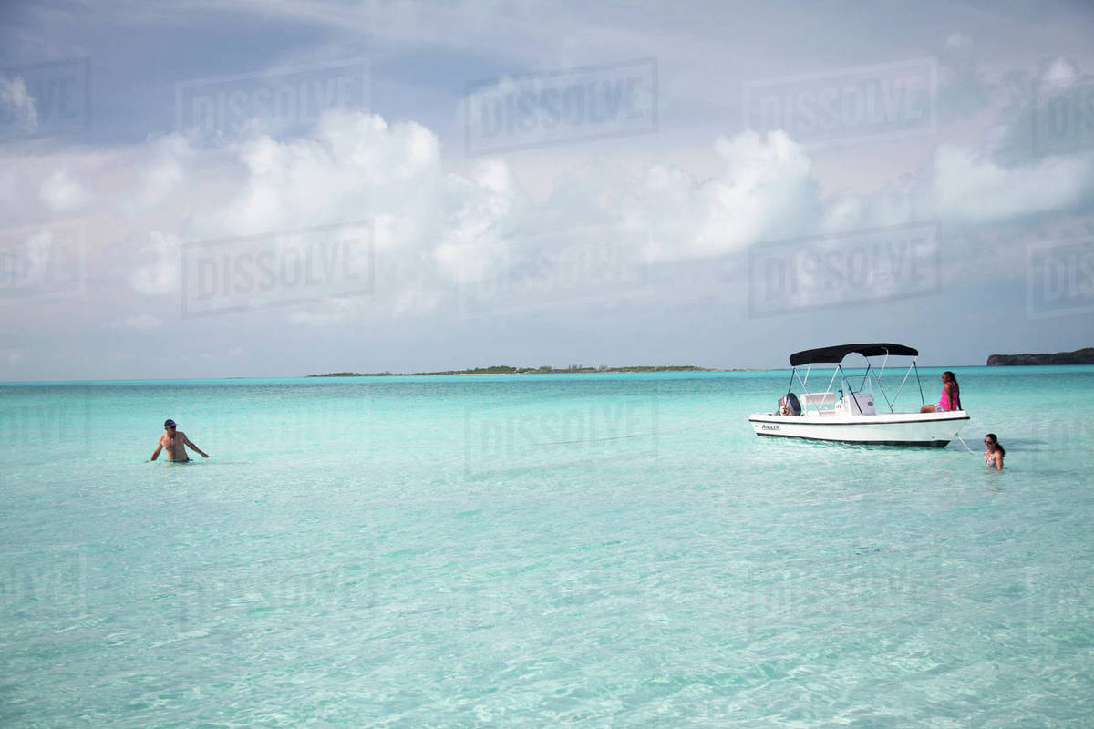 Ruby on the beach of Compass Cay  stock photo