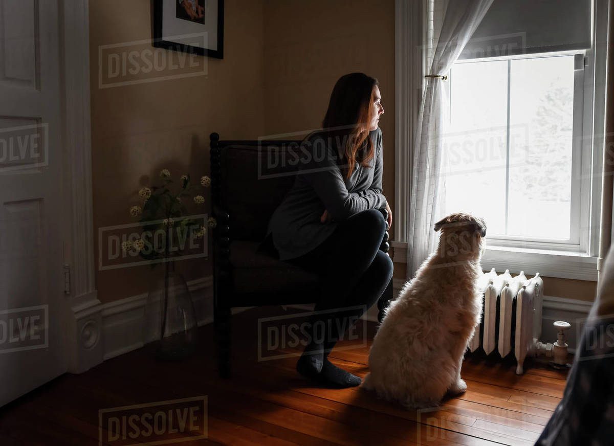Super Woman Sitting In Chair In Dark Room Looking Out Window With Dog Stock Photo Squirreltailoven Fun Painted Chair Ideas Images Squirreltailovenorg