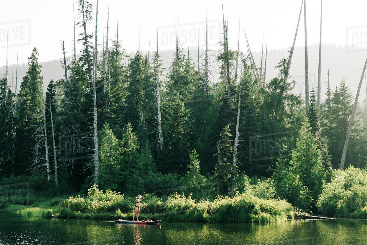 A young woman enjoys a standup paddle board on Lost Lake in Oregon. Royalty-free stock photo