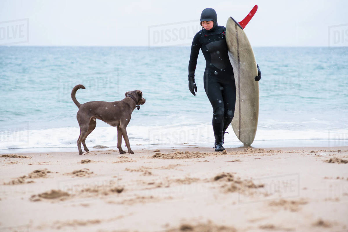 Young woman and her dog going winter surfing in snow Royalty-free stock photo