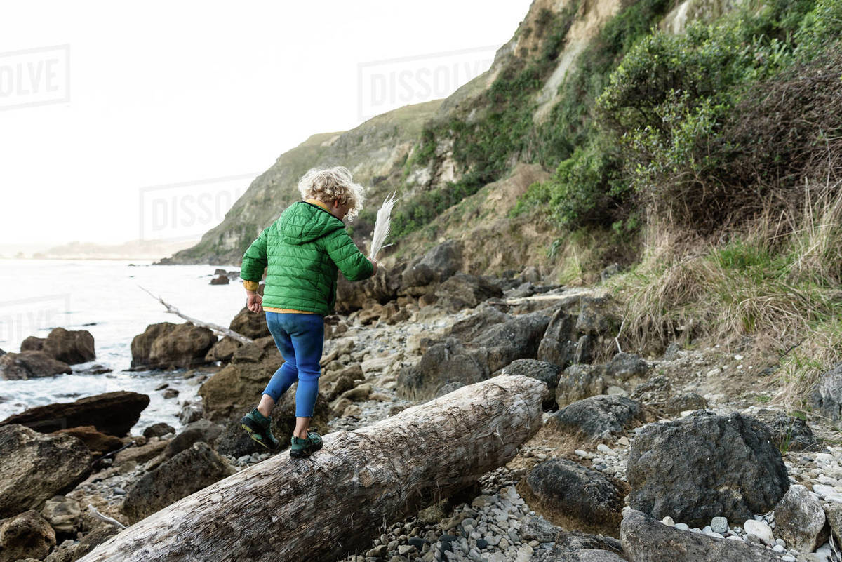 Curly haired child walking on log near ocean in New Zealand Royalty-free stock photo