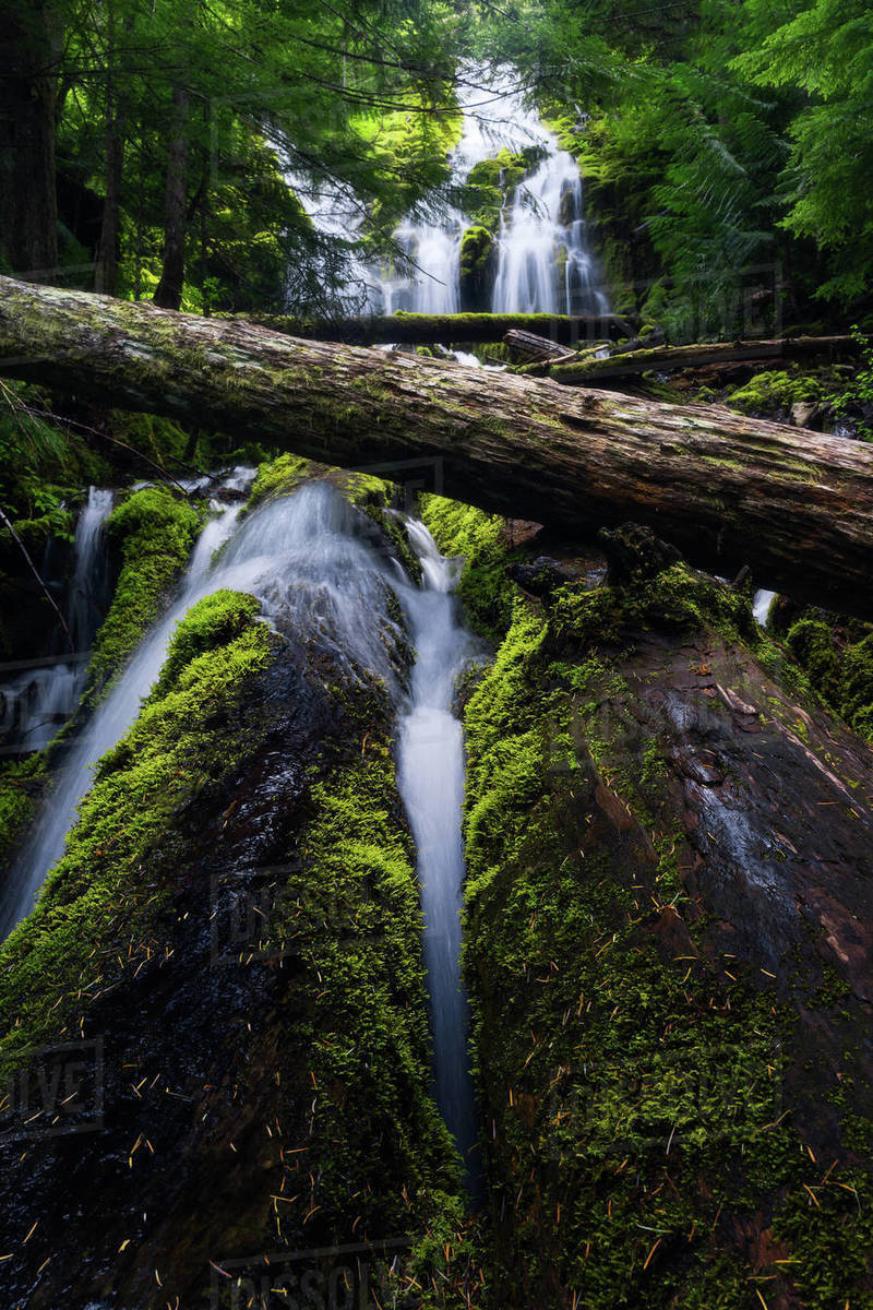 Landscape of Upper Proxy Waterfall in Oregon Royalty-free stock photo
