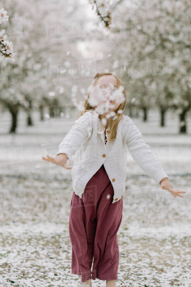 Young girl throwing petals at camera in an almond orchard Royalty-free stock photo