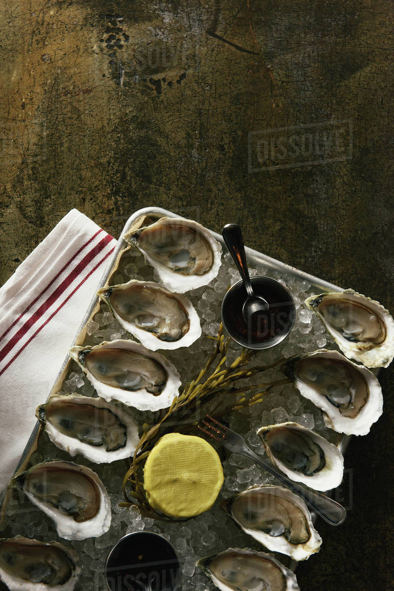 Platter of one dozen oysters on metal tabletop at restaurant Royalty-free stock photo