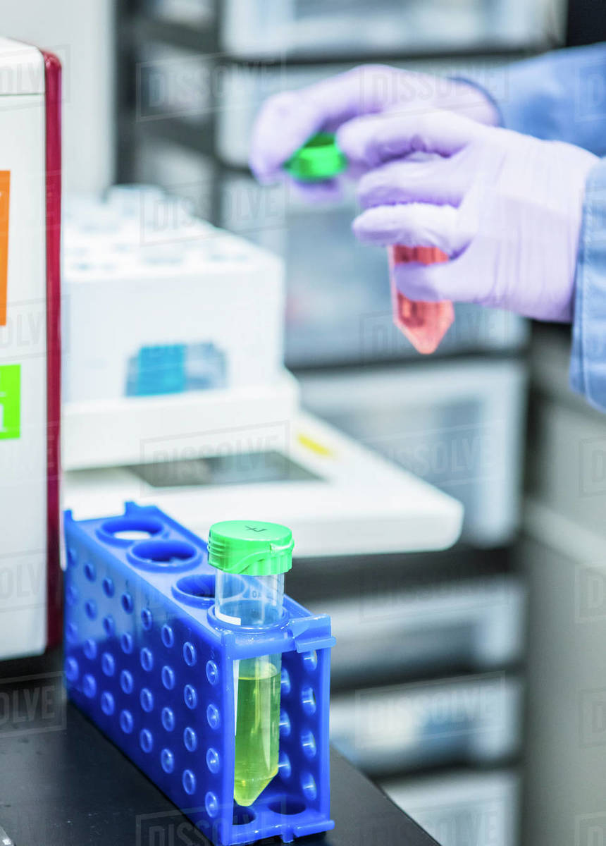 Bioscience research in a laboratory Royalty-free stock photo