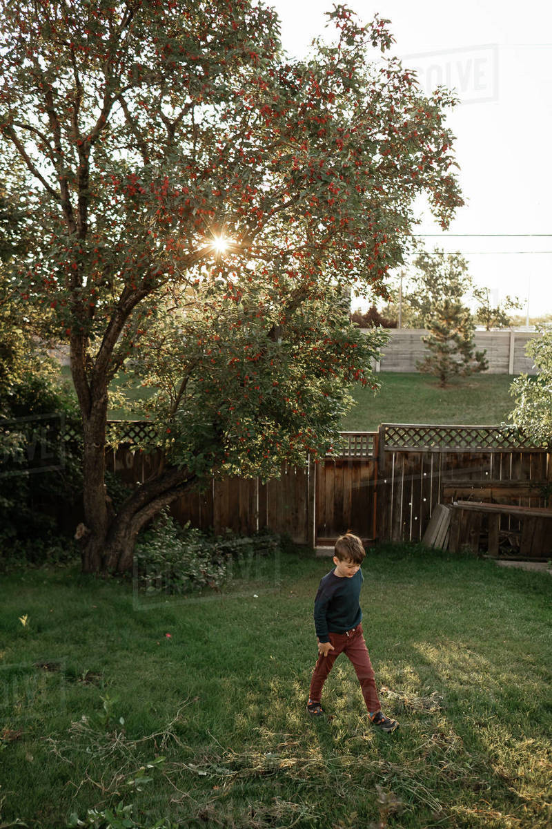 Young boy walking in backyard in the summer Royalty-free stock photo
