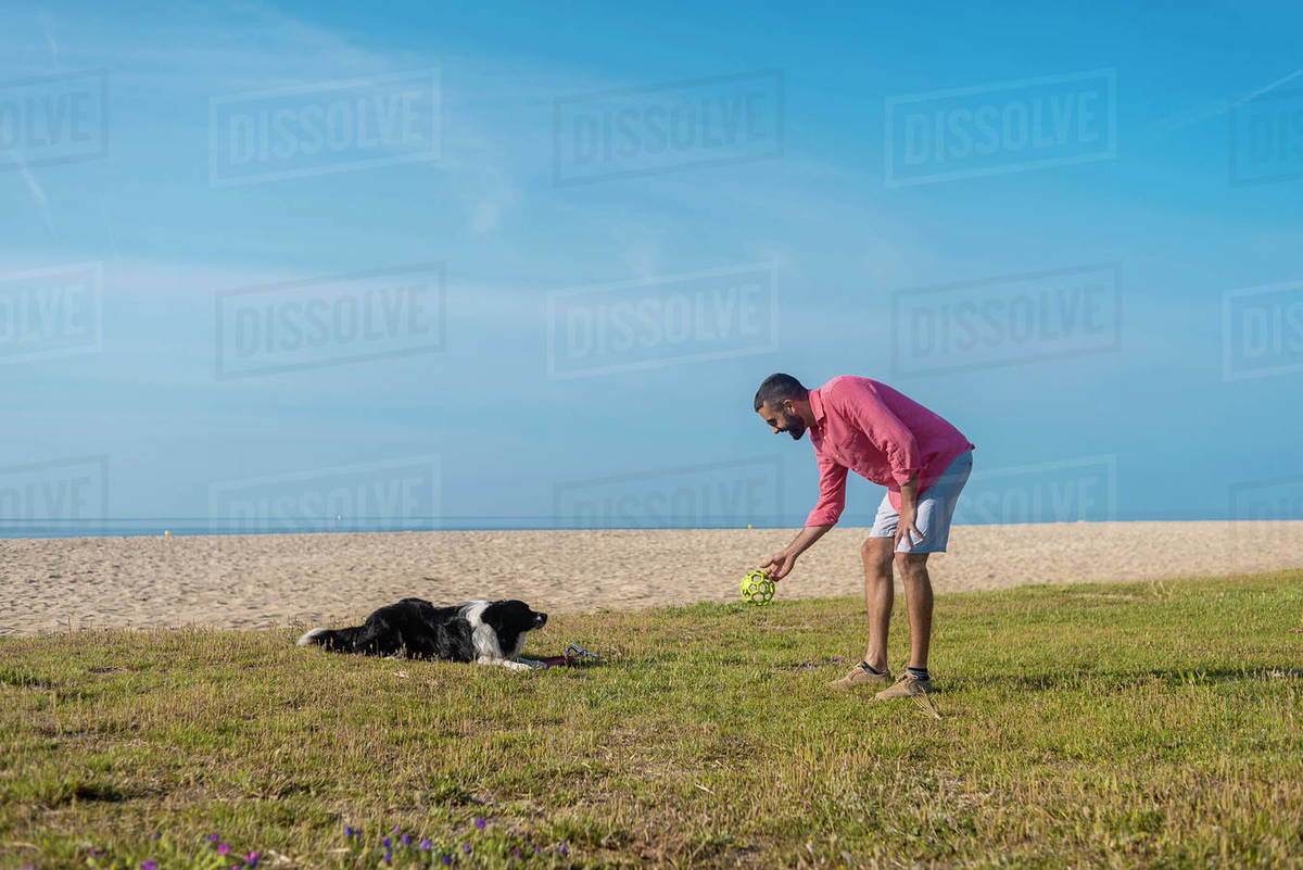 Bearded man playing with dog at beach in sunny day Royalty-free stock photo