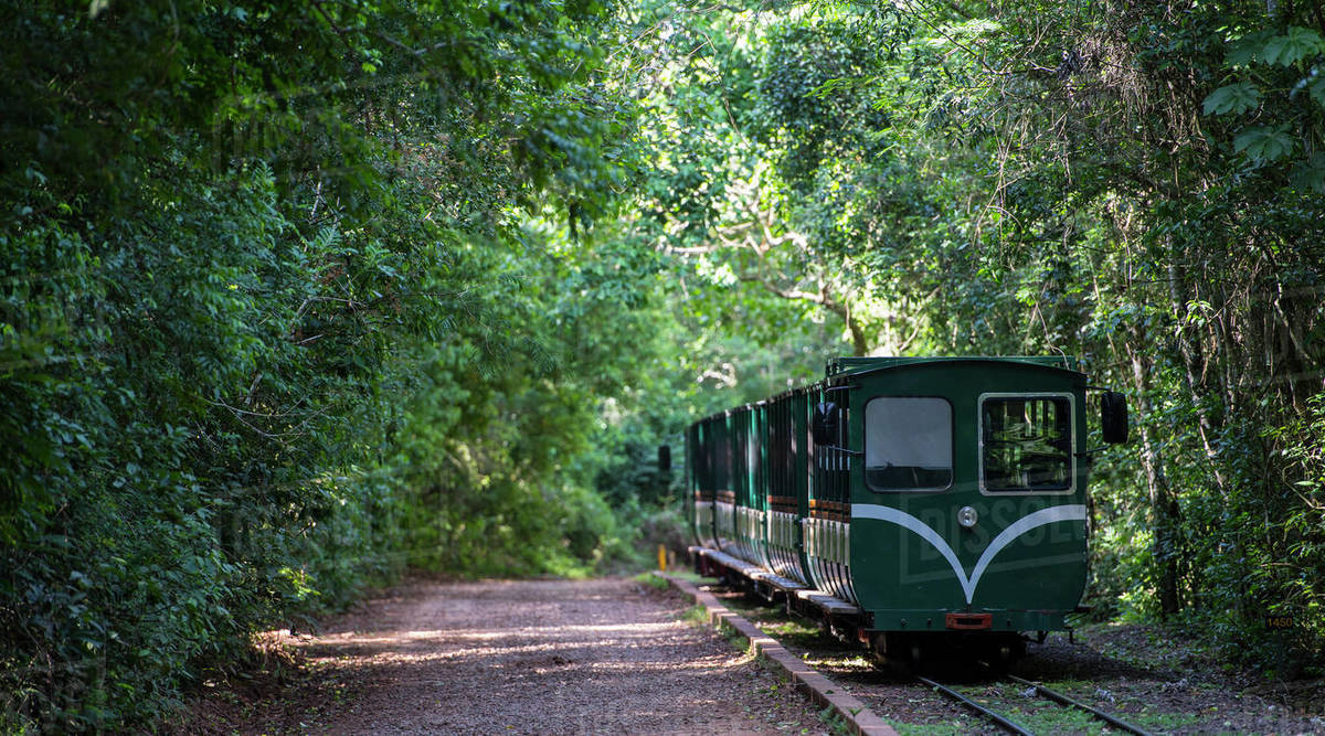 Passenger train at the Iguacu National Park in Argentina Royalty-free stock photo