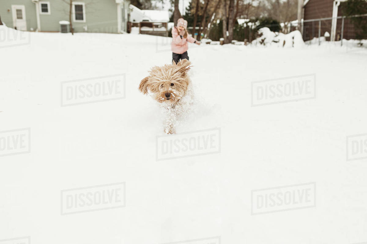 Young girl chasing pet dog through snow in backyard Royalty-free stock photo