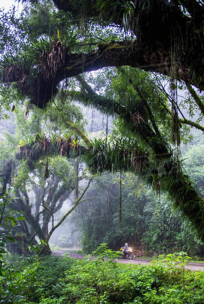 Woman riding touring motorbike through rain forest, Jujuy / Argentina Royalty-free stock photo