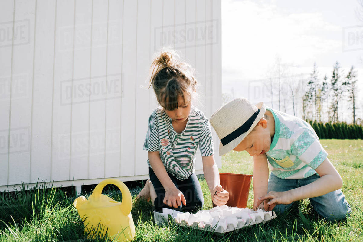 Brother and sister planting seeds together in egg shells in the garden Royalty-free stock photo