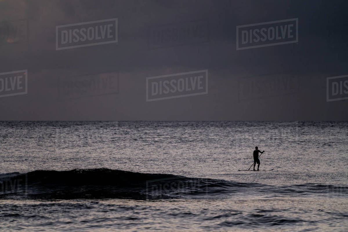 Silhouette of stand up paddler in the evening in hawaii Royalty-free stock photo