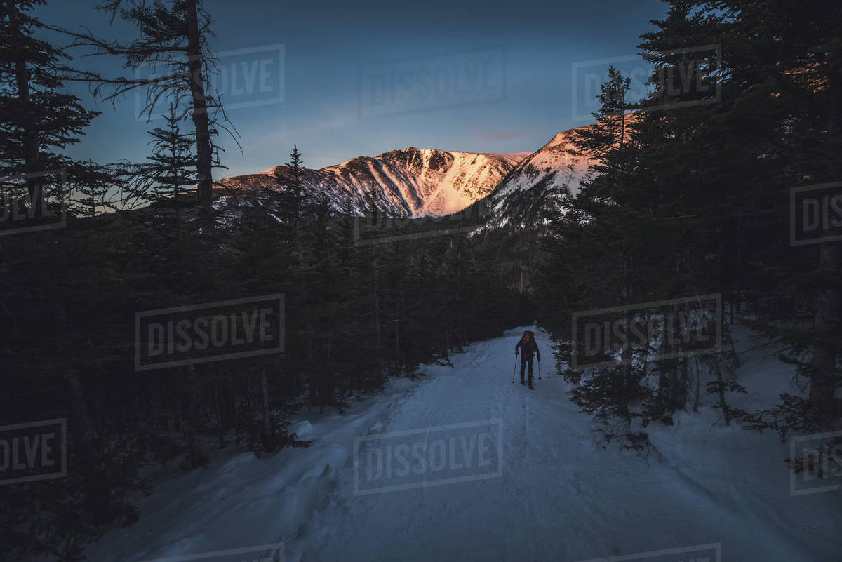 A backcountry skier skins up a trail in the White Mountains at sunrise Royalty-free stock photo