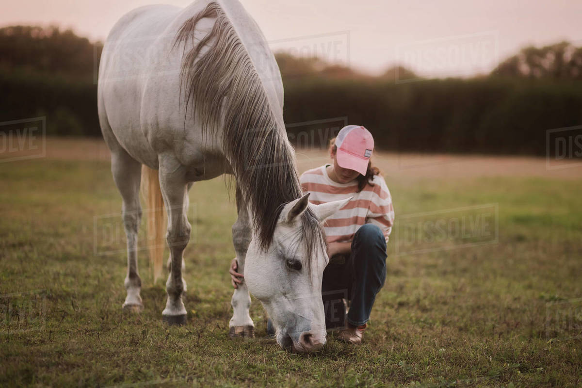 The touch of a horse Royalty-free stock photo