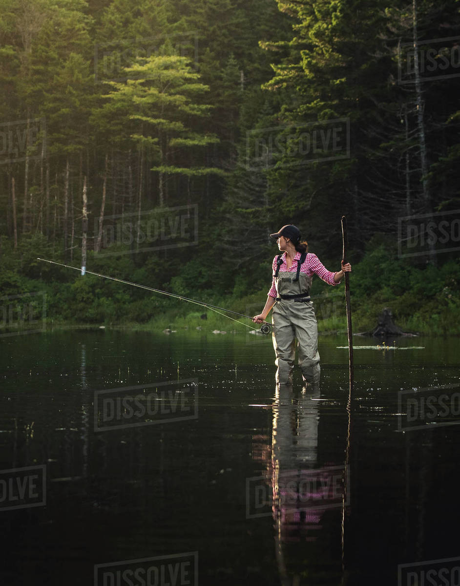 Woman angler with fly rod and wading stick in NH backcountry lake Royalty-free stock photo