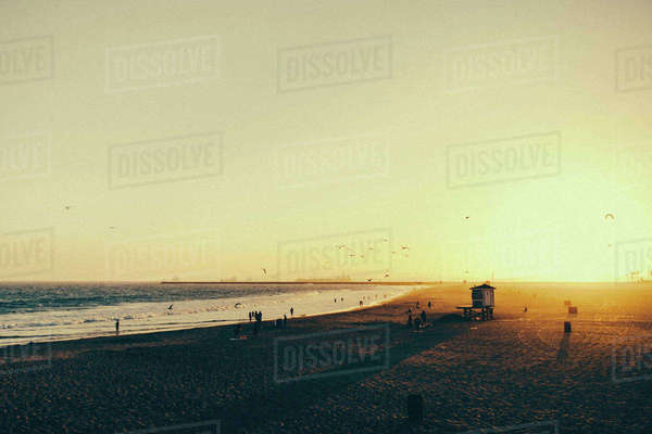 People on beach against clear sky during sunset Royalty-free stock photo