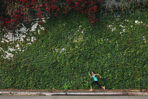 Side view of woman running against ivy covered wall Royalty-free stock photo