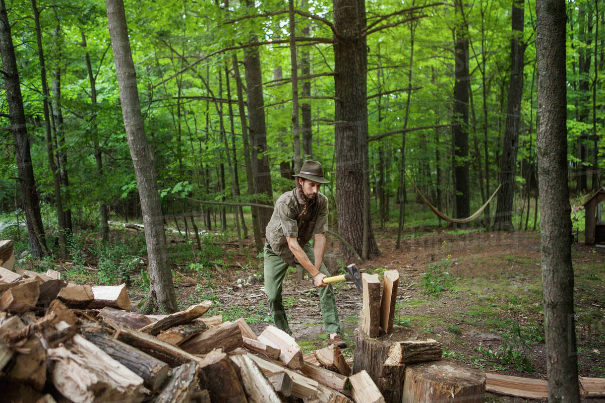 Man in hat cutting firewood with hammer in forest Royalty-free stock photo