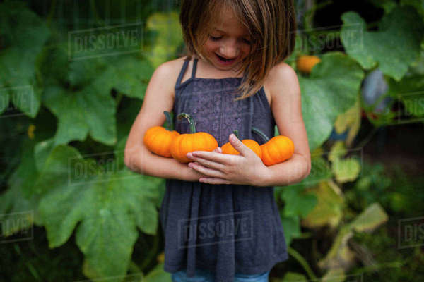 Happy girl holding pumpkins while standing against plants Royalty-free stock photo