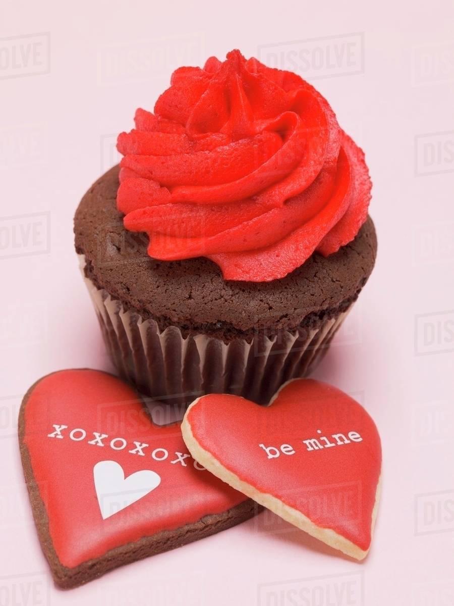 Chocolate Cupcake With Red Cream Rosette Stock Photo Dissolve