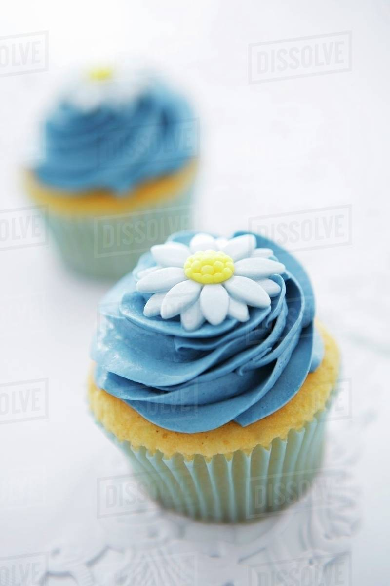 Cupcakes With Blue Buttercream Icing And A Sugar Flower Stock Photo Dissolve