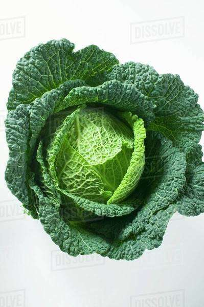 Savoy cabbage from above Royalty-free stock photo